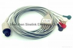 一体式5导联分线,AMP6针,按扣式电极,美标