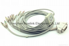 Hellige One Piece EKG Cable with 10 Leadwires, IEC