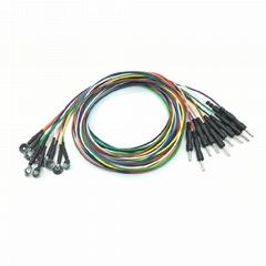 銀氯化銀腦電電極,鑄造式Φ10mm電極,DIN42802插孔, 10色線一套