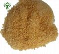 bovine skin gelatin powder bulk for