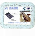 common conveyor belt 1