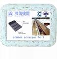 common conveyor belt