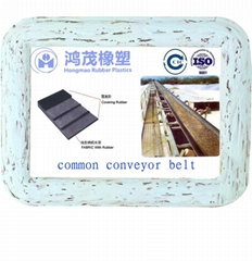 common conveyor belt