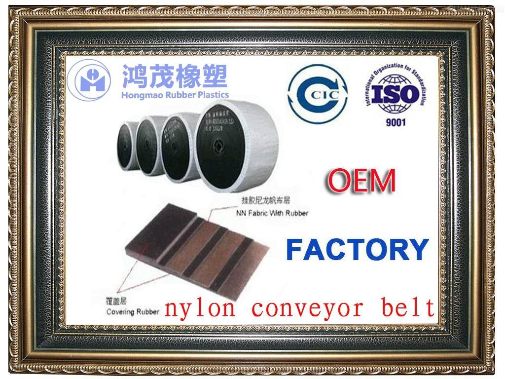 Nylon conveyor belt manufacturer 1
