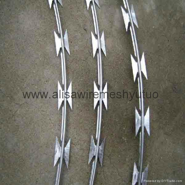 Hot Dippes Ga  anized concertina razor wire bto-22  2