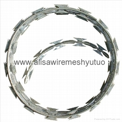 450mm/600mm/900mm/1050mm Hot Dipped Galvanized Concertina Razor Barbed Wire for
