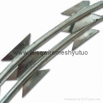 Concertina razor wire for prison and pasture(direct factory)