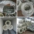 Concertina razor wire for prison and pasture(direct factory) 5