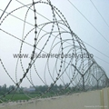 Anti climb razor barbed wire