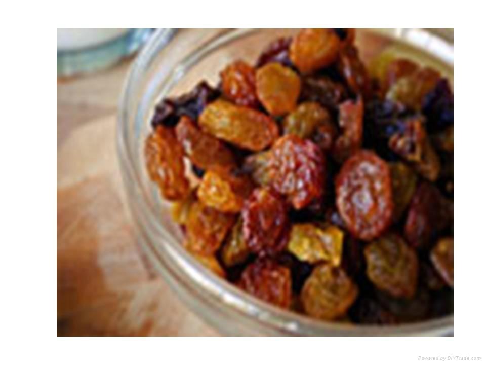 Brown Raisins (Sourav Food And Agro) 1