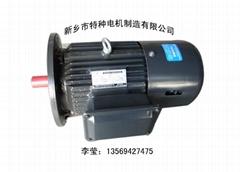 YEJ100L1-4 B5 立式制动电机