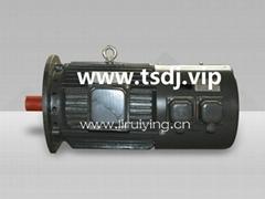 YZPEJ132S-4起重用变频调速电机