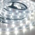 LED SMD BAR/STRIP 5050 LIGHT