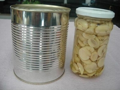 Canned Food Canned Mushr