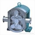 YONJOU rotary lobe pump-cream pump