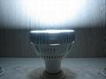 LED Par30 射灯