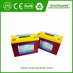 EverExceed Deep Cycle Max Range VRLA Battery