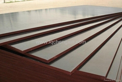 Price for film faced plywood