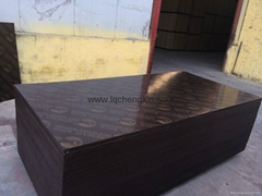 wbp film faced plywood (