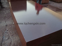 Chengxin  brown film faced plywood
