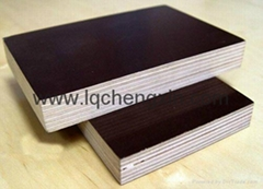 Chinese wbp glue brown or black film faced plywood for construction
