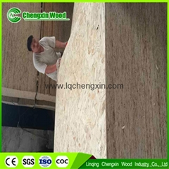 1220x2440 11mm OSB board prices