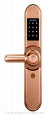 wifi door lock also called electronic door lock can be opend by mobile phone, pa