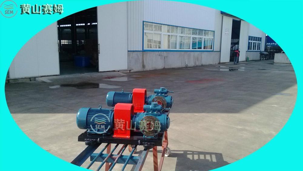 HSNH40-38原油輸送泵三螺杆泵 3