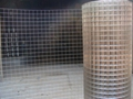 stainless steel welded wire mesh (manufacture) 2