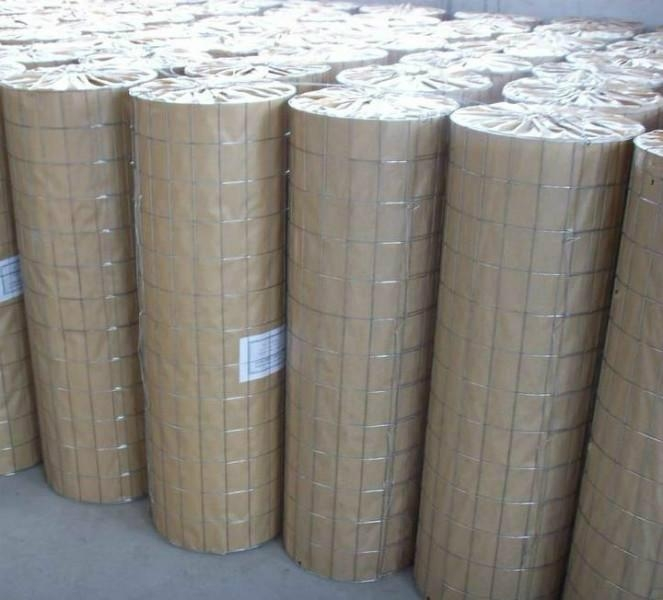 High Quality Welded Wire Mesh Manufacturer (Anping Factory) 1
