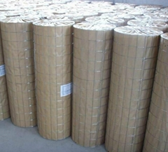 High Quality Welded Wire Mesh Manufacturer (Anping Factory)