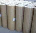 304 Stainless Steel Welded Wire Mesh 2
