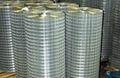 Best Selling!Galvanized Welded wire