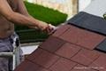 asphalt roof shingle