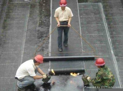 SBS/APP modified bitumen waterproof membrane 4