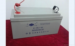 12-65AH lead-acid battery