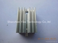 Audion heatsink or dynatron heatsink silver anodized