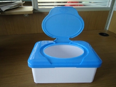 plastic boxes for wet wipe