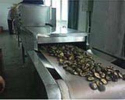 microwave drying/Mushroom dust sterilizer machin 3