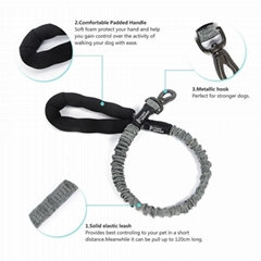 360°Swivel No Tangle Dog Walking & Training Leash, Comfortable