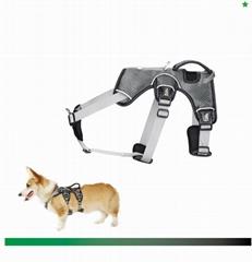 Dog Harness Chest Straps