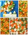IQF mixed vegetables  2