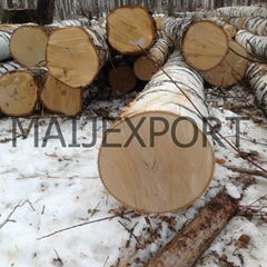 Birch Wood Logs ~ Birch wood products diytrade china manufacturers