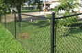 chain link fence  2