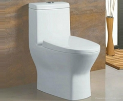 Sanitary ware auto cleaning toilet seat