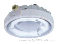 新黎明CCD96防爆环形荧光灯