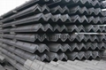 Hot Rolled Prime Angle Steel
