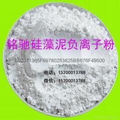 Diatom mud environmental protection paint latex paint white anion powder