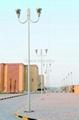 Aluminum Garden Lighting Poles and