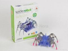 DIY spider robot
